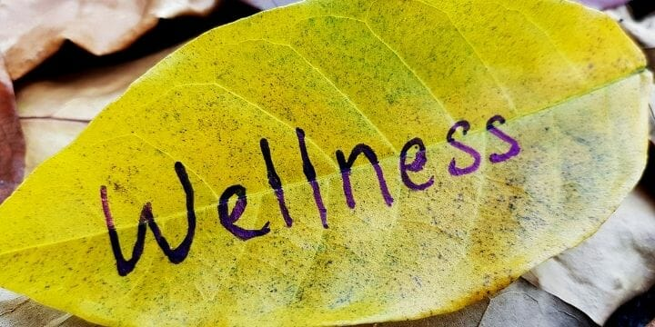 Spiritual wellness is an important part of your overall wellness and a piece of our wellness wheel. It's your path towards your life's meaning and purpose.