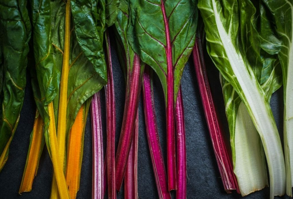 rainbow swiss chard leaves laying in a row on a table